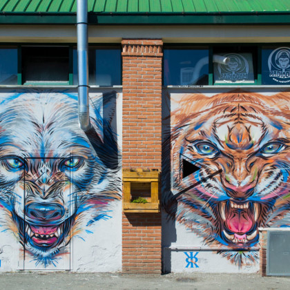 WOLF AND TIGER - Spray paint and acrylic on wall - 700x400cm - 2013