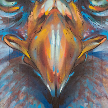 EAGLE (detail) - Spray paint and acrylic on wall - 250x350cm - 2013