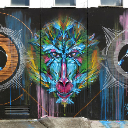 MYSTICAL MONKEYS (part 2)- Spray paint and acrylic on wall - 600x500cm - 2014 (collaboration with Corn79)