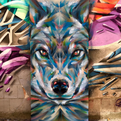 WOLF LIKE ME - Spray paint on wood - 80x210cm - 2016